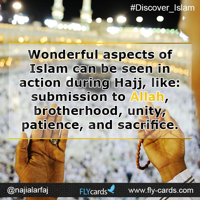 wonderful aspects of islam can be seen