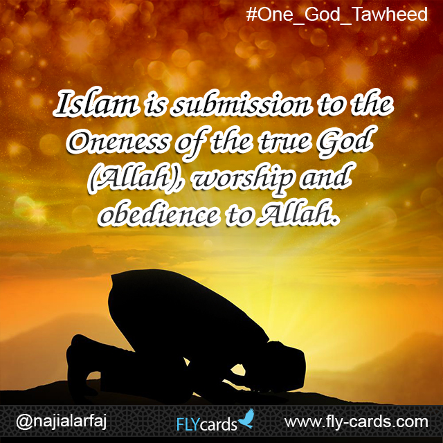 islam is the submission to the oneness of allah