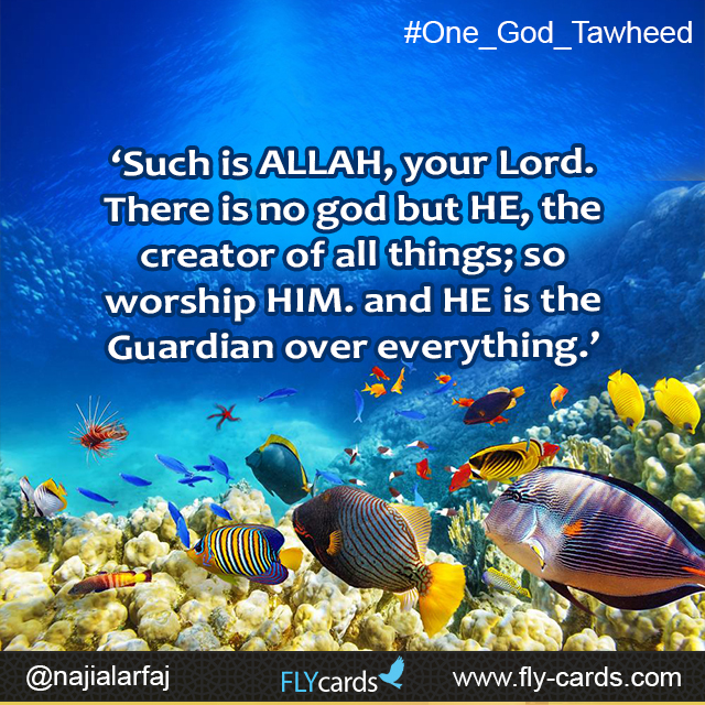 Such is Allah, your lord