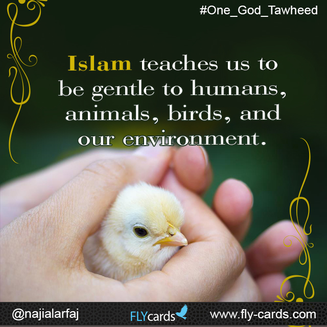 Islam teaches us to be gentle