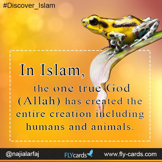 In Islam