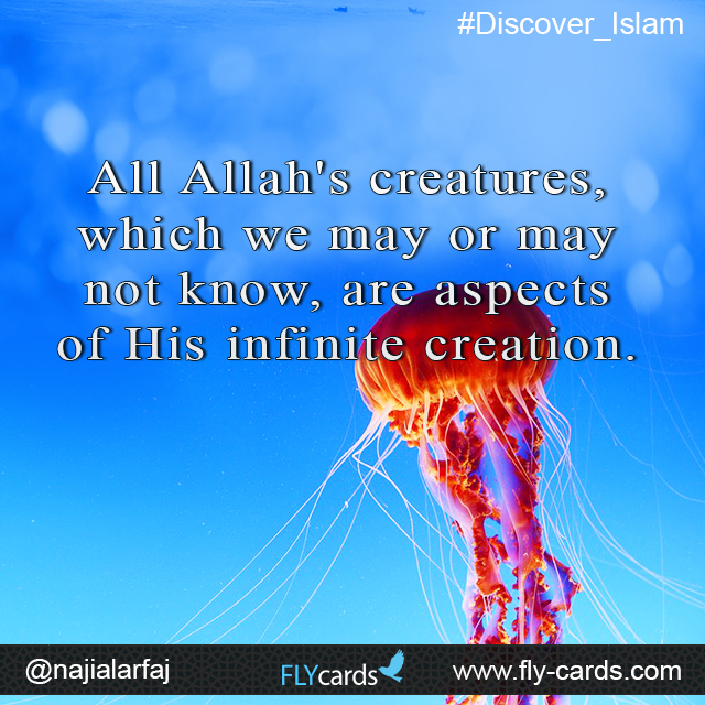 All Allah's creatures